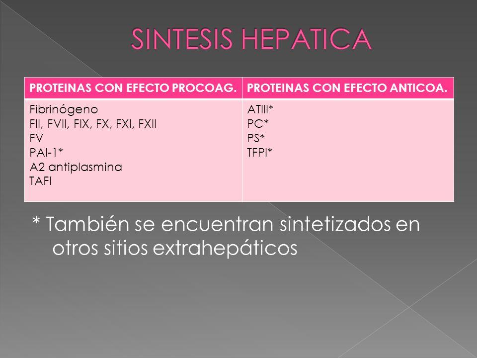 * También se encuentran sintetizados en otros sitios extrahepáticos PROTEINAS CON EFECTO PROCOAG.PROTEINAS CON EFECTO ANTICOA. Fibrinógeno FII, FVII,