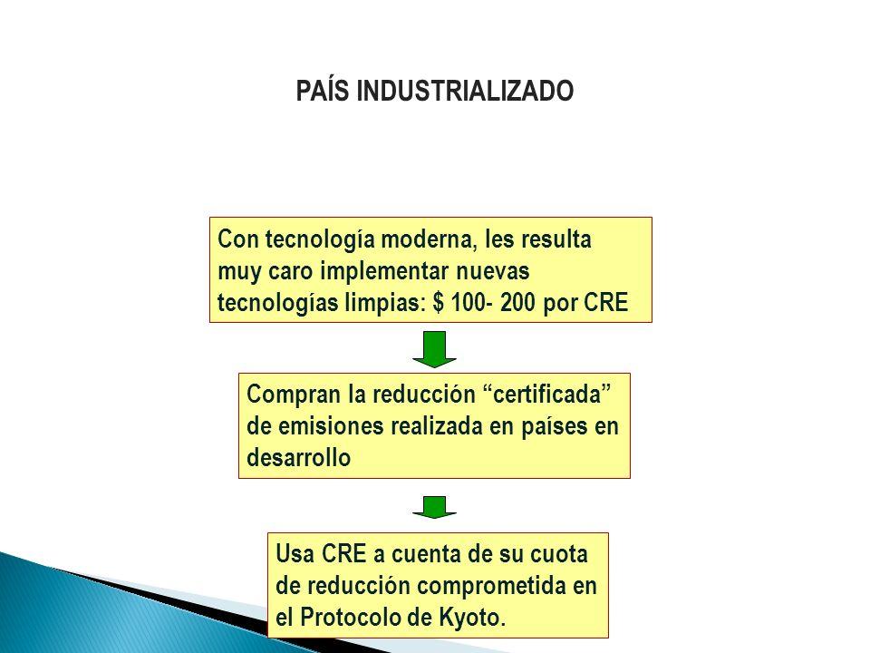 Compran la reducción certificada de emisiones realizada en países en desarrollo Usa CRE a cuenta de su cuota de reducción comprometida en el Protocolo