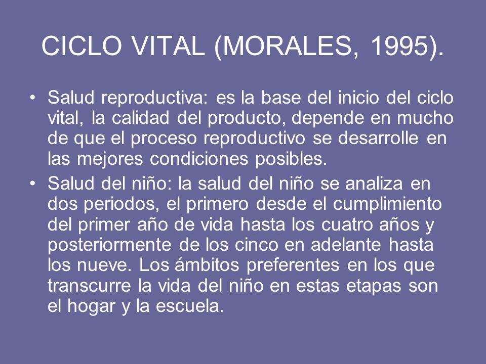 CICLO VITAL (MORALES, 1995). Salud reproductiva: es la base del inicio del ciclo vital, la calidad del producto, depende en mucho de que el proceso re