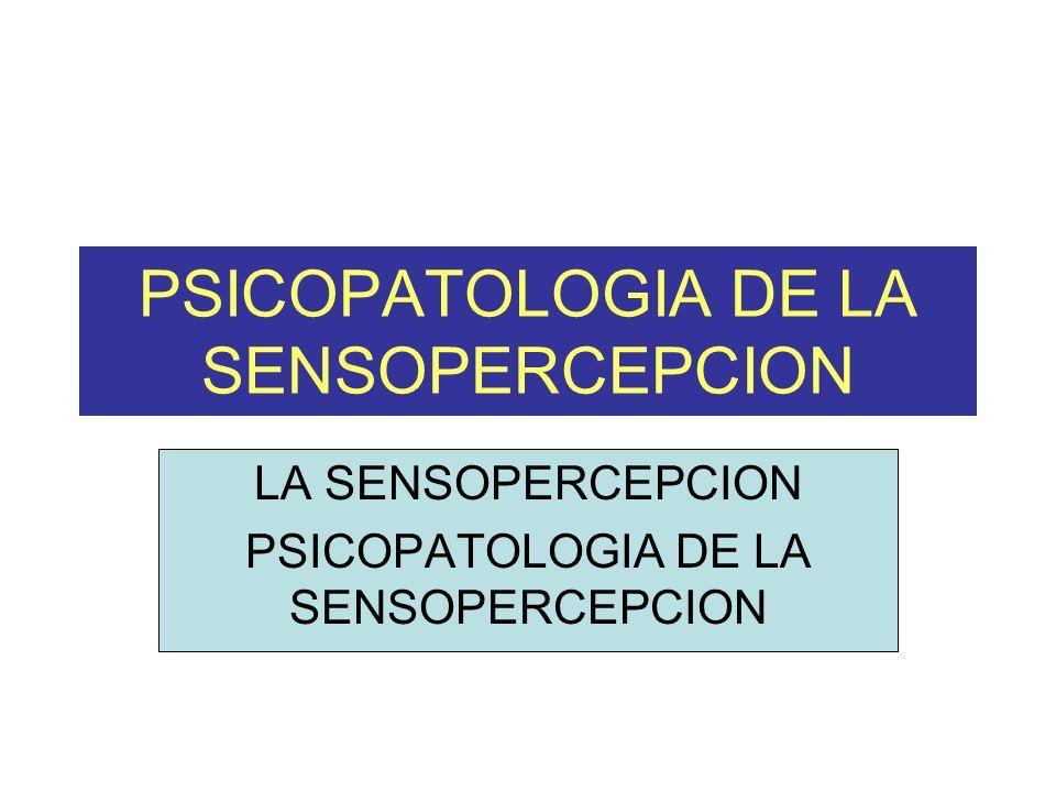 PSICOPATOLOGIA DE LA SENSOPERCEPCION LA SENSOPERCEPCION PSICOPATOLOGIA DE LA SENSOPERCEPCION
