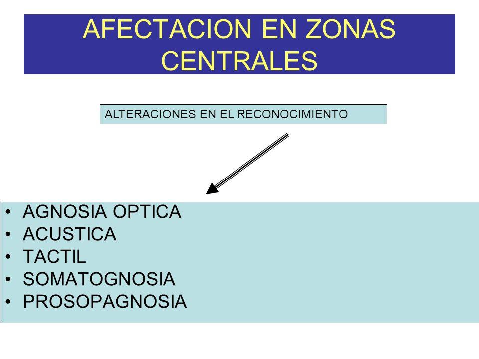 AGNOSIA OPTICA ACUSTICA TACTIL SOMATOGNOSIA PROSOPAGNOSIA AFECTACION EN ZONAS CENTRALES ALTERACIONES EN EL RECONOCIMIENTO