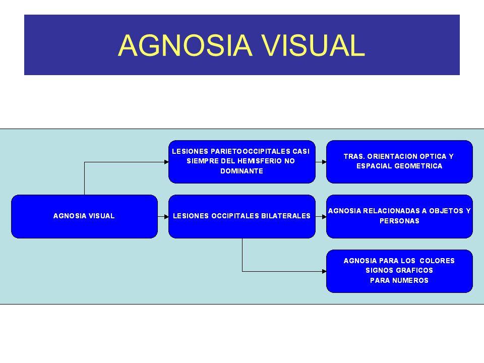 AGNOSIA VISUAL