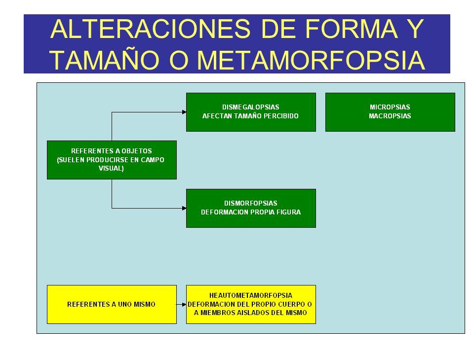 ALTERACIONES DE FORMA Y TAMAÑO O METAMORFOPSIA