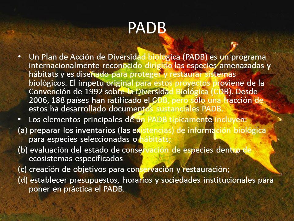 PADB Un Plan de Acción de Diversidad biológica (PADB) es un programa internacionalmente reconocido dirigido las especies amenazadas y hábitats y es di