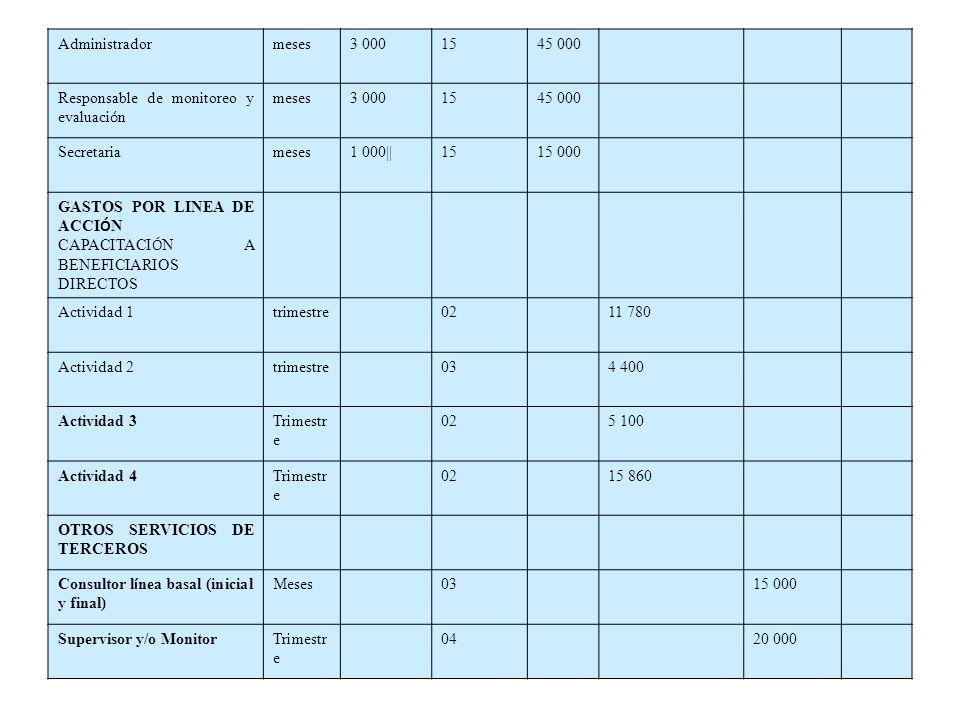 Administradormeses3 0001545 000 Responsable de monitoreo y evaluaci ó n meses3 0001545 000 Secretariameses1 000||1515 000 GASTOS POR LINEA DE ACCI Ó N