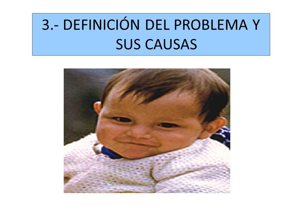 3.- DEFINICIÓN DEL PROBLEMA Y SUS CAUSAS