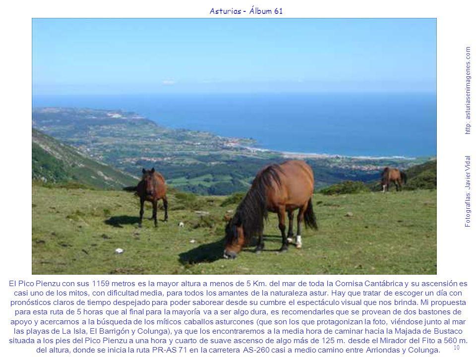 10 Asturias - Álbum 61 Fotografías: Javier Vidal http: asturiasenimagenes.com El Pico Pienzu con sus 1159 metros es la mayor altura a menos de 5 Km. d