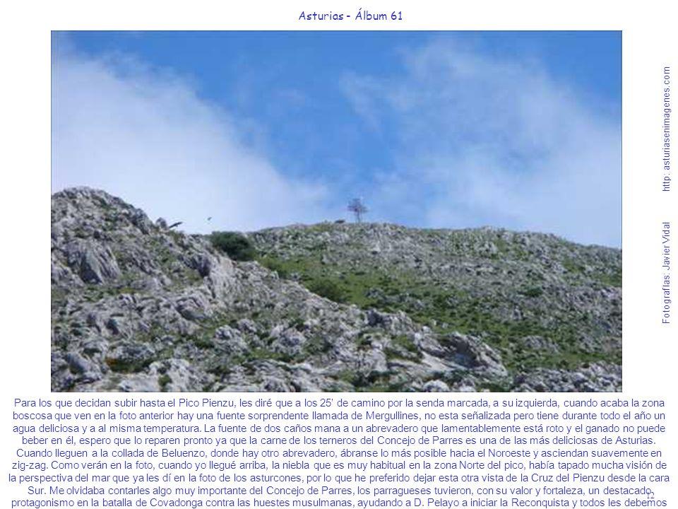 12 Asturias - Álbum 61 Fotografías: Javier Vidal http: asturiasenimagenes.com Para los que decidan subir hasta el Pico Pienzu, les diré que a los 25 d