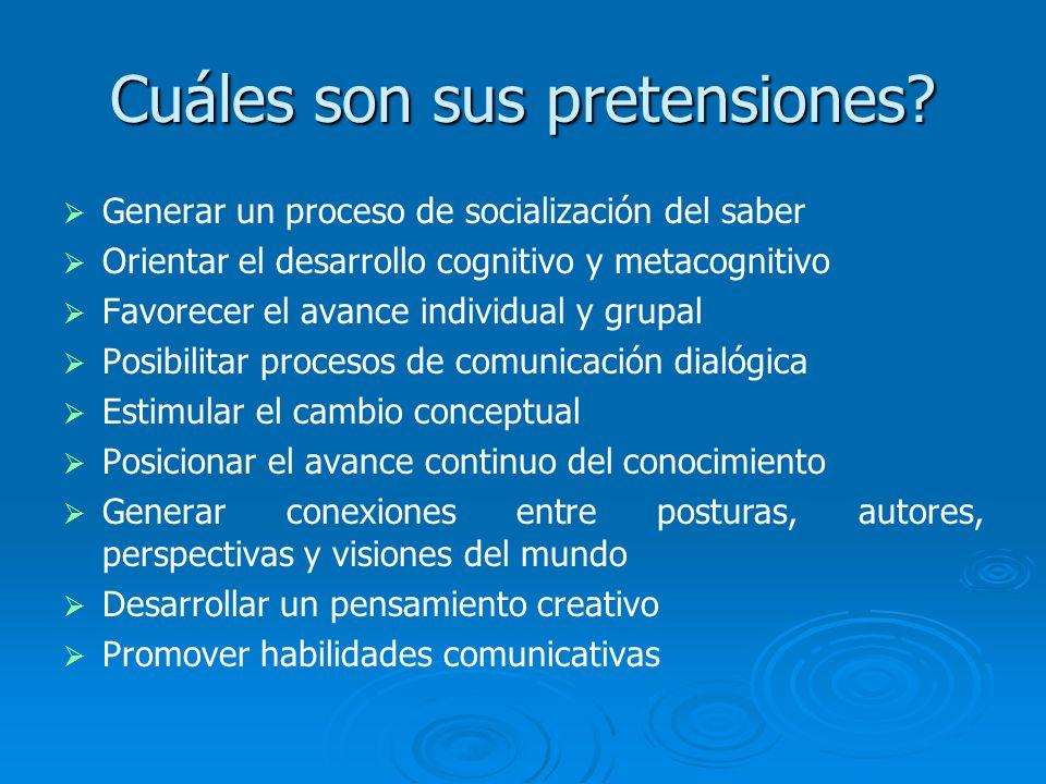 Cuáles son sus pretensiones? Generar un proceso de socialización del saber Orientar el desarrollo cognitivo y metacognitivo Favorecer el avance indivi