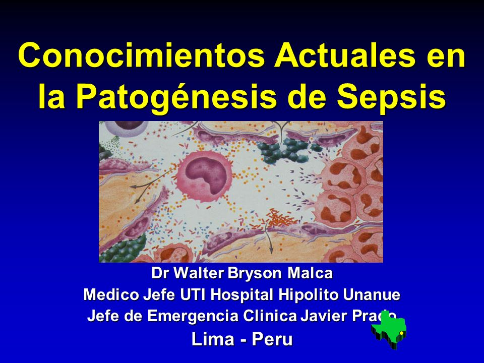 Conocimientos Actuales en la Patogénesis de Sepsis Dr Walter Bryson Malca Medico Jefe UTI Hospital Hipolito Unanue Jefe de Emergencia Clinica Javier P
