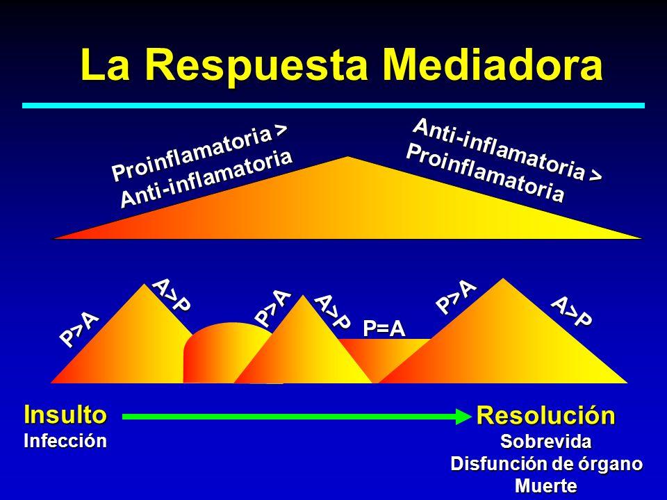 InsultoInfección ResoluciónSobrevida Disfunción de órgano Muerte Proinflamatoria > Anti-inflamatoria Anti-inflamatoria > Proinflamatoria La Respuesta