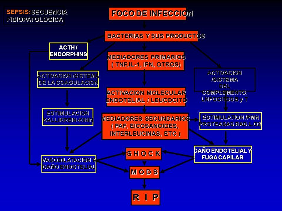 FOCO DE INFECCION BACTERIAS Y SUS PRODUCTOS MEDIADORES PRIMARIOS ( TNF,IL-1, IFN, OTROS) ACTIVACION MOLECULAR ENDOTELIAL / LEUCOCITO MEDIADORES SECUND