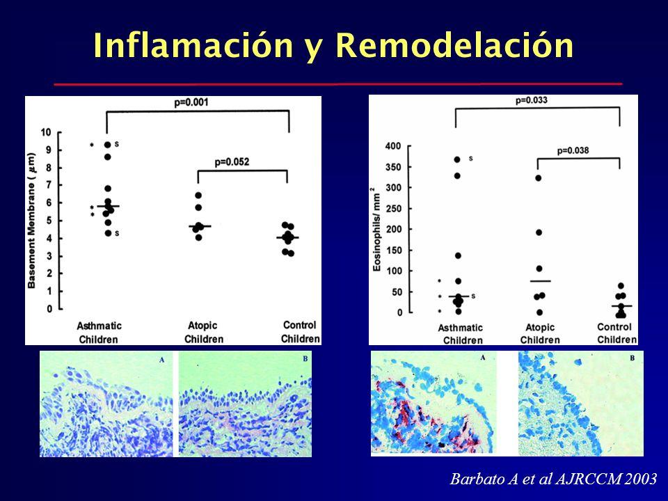 Barbato A et al AJRCCM 2003 Inflamación y Remodelación