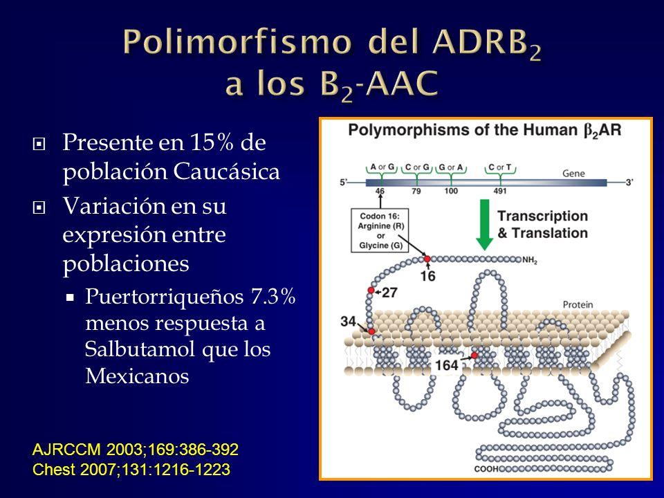 Presente en 15% de población Caucásica Variación en su expresión entre poblaciones Puertorriqueños 7.3% menos respuesta a Salbutamol que los Mexicanos