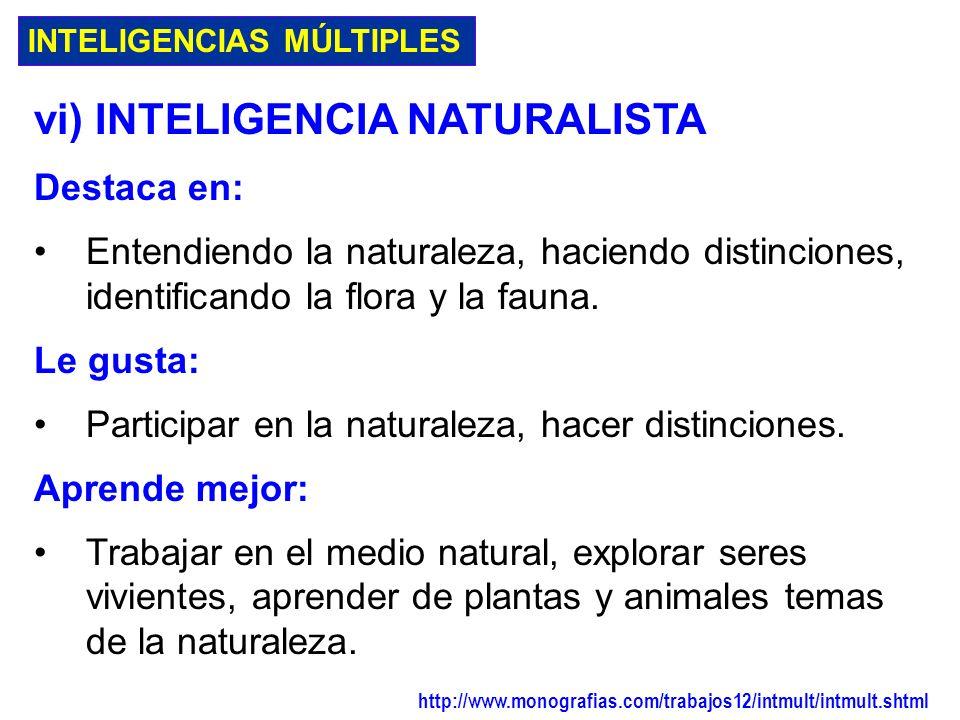 INTELIGENCIAS MÚLTIPLES v) INTELIGENCIA CINÉTICO-CORPORAL Destaca en: Atletismo, danza, arte dramático, trabajos manuales, utilización de herramientas