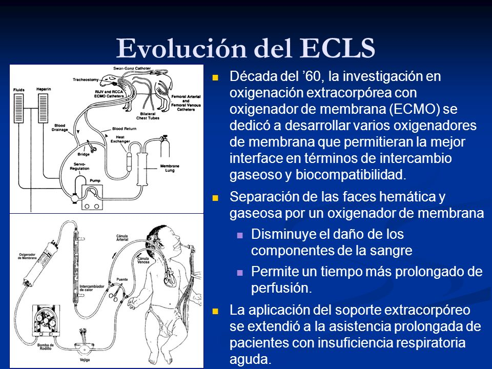 Evolución del ECLS Década del 60, la investigación en oxigenación extracorpórea con oxigenador de membrana (ECMO) se dedicó a desarrollar varios oxige