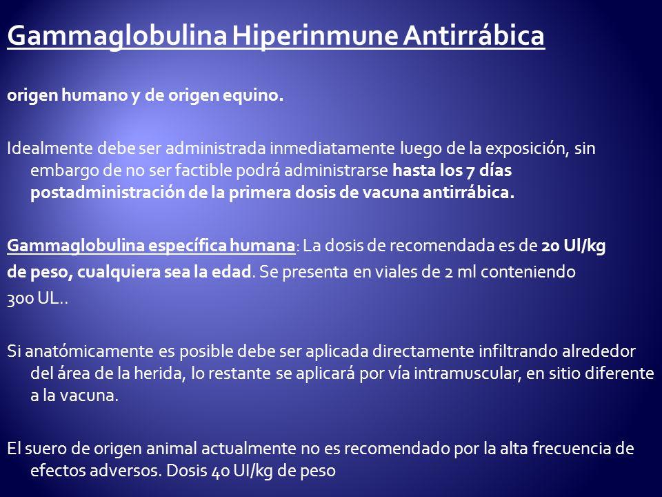 Gammaglobulina Hiperinmune Antirrábica origen humano y de origen equino. Idealmente debe ser administrada inmediatamente luego de la exposición, sin e