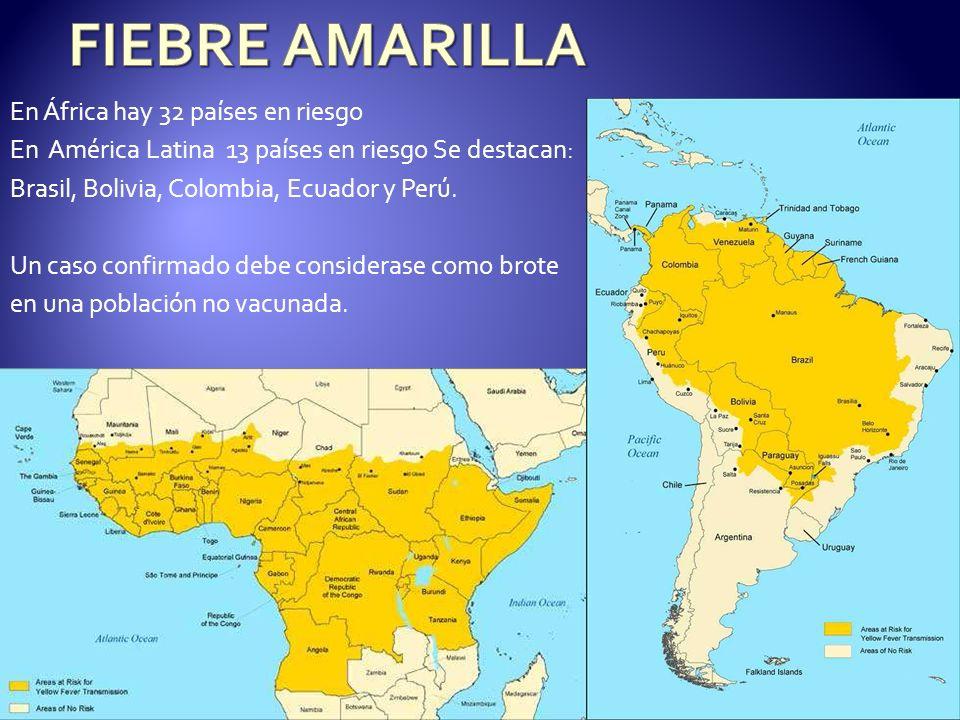 En África hay 32 países en riesgo En América Latina 13 países en riesgo Se destacan: Brasil, Bolivia, Colombia, Ecuador y Perú. Un caso confirmado deb
