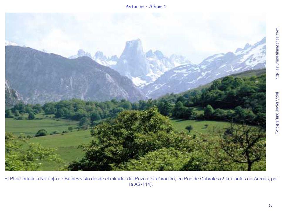 Fotografías: Javier Vidal http: asturiasenimagenes.com 10 Asturias - Älbum 1 El Picu Urriellu o Naranjo de Bulnes visto desde el mirador del Pozo de l