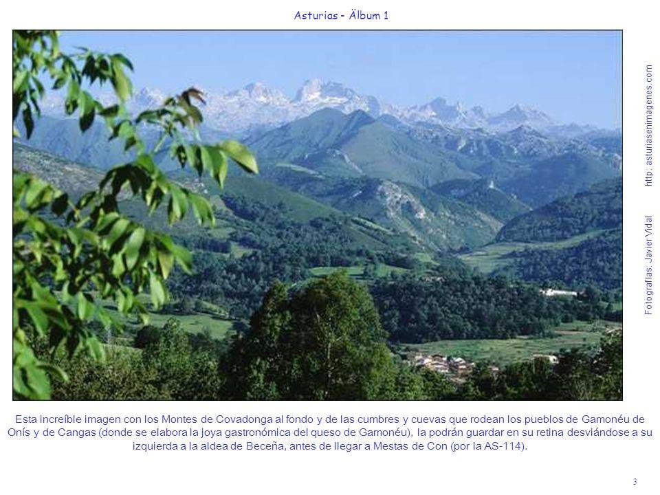 Fotografías: Javier Vidal http: asturiasenimagenes.com 3 Asturias - Älbum 1 Esta increíble imagen con los Montes de Covadonga al fondo y de las cumbre