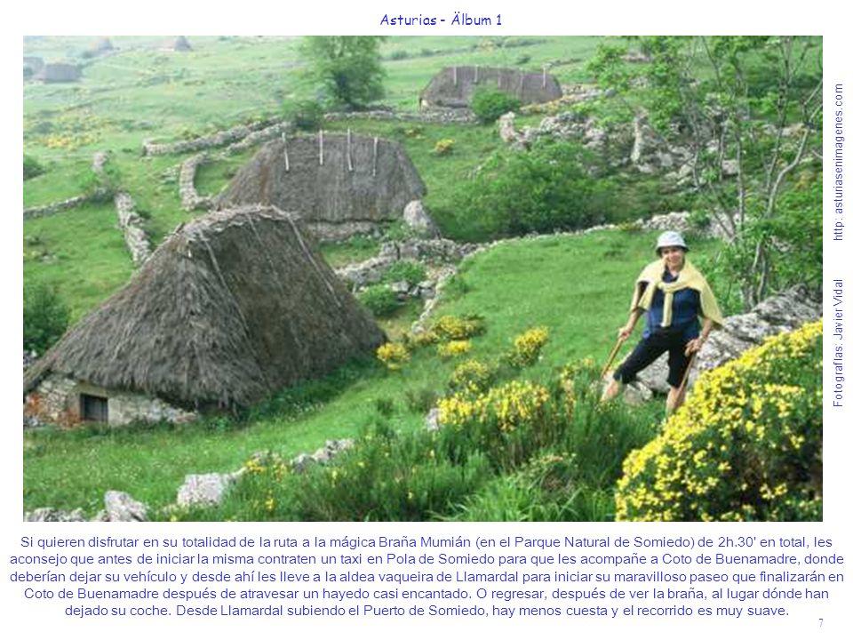 Fotografías: Javier Vidal http: asturiasenimagenes.com 7 Asturias - Älbum 1 Si quieren disfrutar en su totalidad de la ruta a la mágica Braña Mumián (