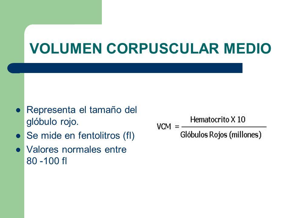 VOLUMEN CORPUSCULAR MEDIO Representa el tamaño del glóbulo rojo. Se mide en fentolitros (fl) Valores normales entre 80 -100 fl