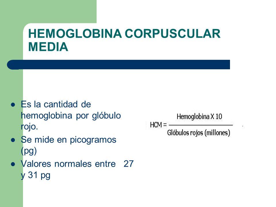 HEMOGLOBINA CORPUSCULAR MEDIA Es la cantidad de hemoglobina por glóbulo rojo. Se mide en picogramos (pg) Valores normales entre 27 y 31 pg
