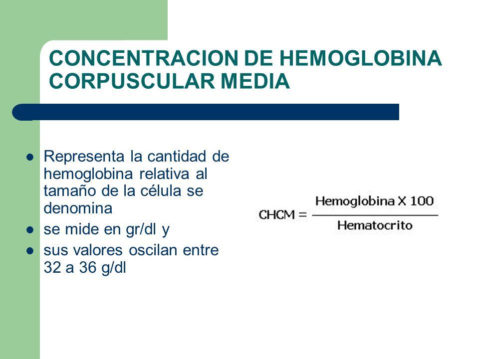 CONCENTRACION DE HEMOGLOBINA CORPUSCULAR MEDIA Representa la cantidad de hemoglobina relativa al tamaño de la célula se denomina se mide en gr/dl y su
