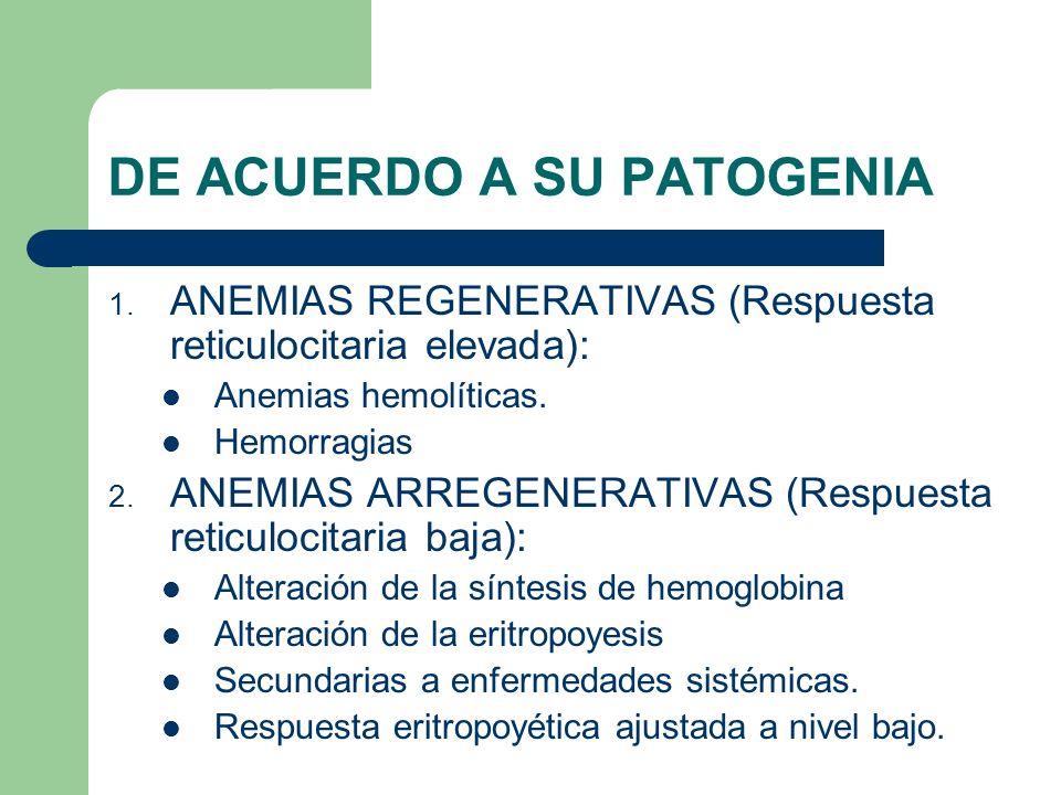 DE ACUERDO A SU PATOGENIA 1. ANEMIAS REGENERATIVAS (Respuesta reticulocitaria elevada): Anemias hemolíticas. Hemorragias 2. ANEMIAS ARREGENERATIVAS (R