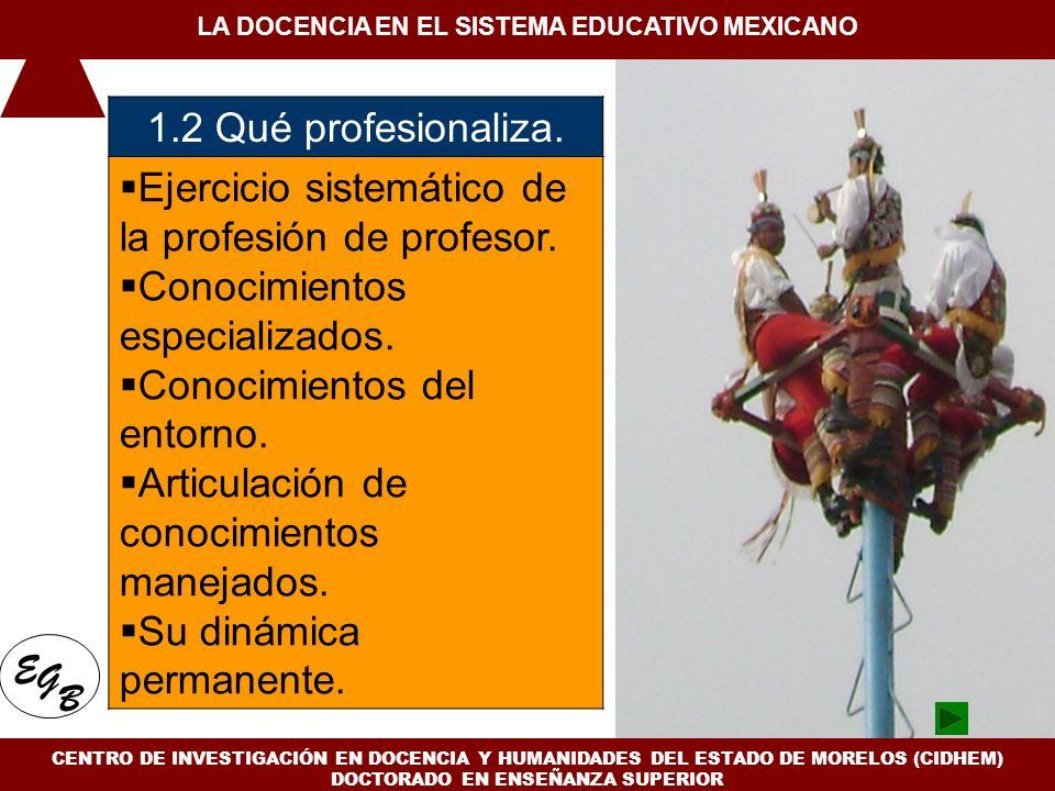 1. Conceptualización de la docencia en el Siglo XXI 1.2 Qué profesionaliza. Ejercicio sistemático de la profesión de profesor. Conocimientos especiali