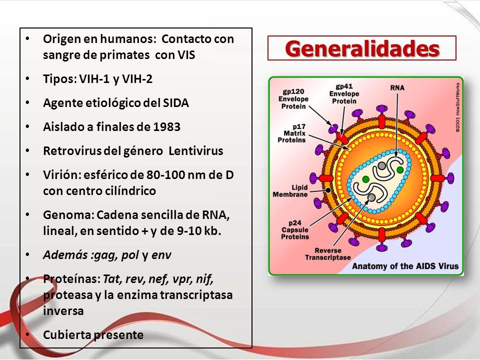 Origen en humanos: Contacto con sangre de primates con VIS Tipos: VIH-1 y VIH-2 Agente etiológico del SIDA Aislado a finales de 1983 Retrovirus del gé
