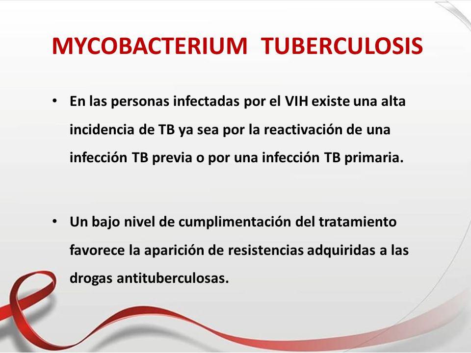 MYCOBACTERIUM TUBERCULOSIS En las personas infectadas por el VIH existe una alta incidencia de TB ya sea por la reactivación de una infección TB previ