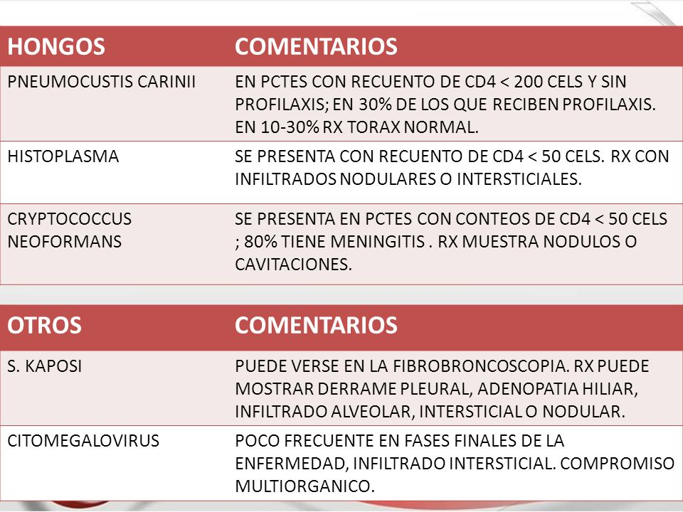 HONGOSCOMENTARIOS PNEUMOCUSTIS CARINIIEN PCTES CON RECUENTO DE CD4 < 200 CELS Y SIN PROFILAXIS; EN 30% DE LOS QUE RECIBEN PROFILAXIS. EN 10-30% RX TOR