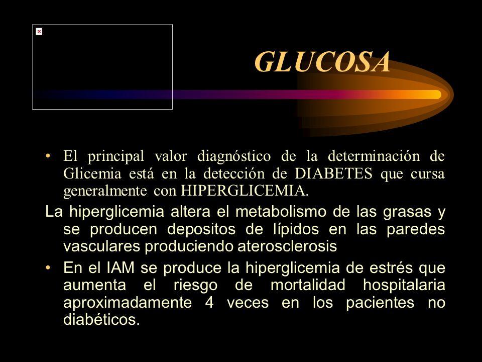 GLUCOSA El principal valor diagnóstico de la determinación de Glicemia está en la detección de DIABETES que cursa generalmente con HIPERGLICEMIA. La h