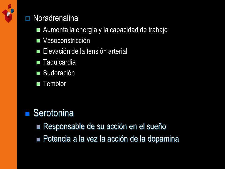 Noradrenalina Aumenta la energía y la capacidad de trabajo Vasoconstricción Elevación de la tensión arterial Taquicardia Sudoración Temblor Serotonina