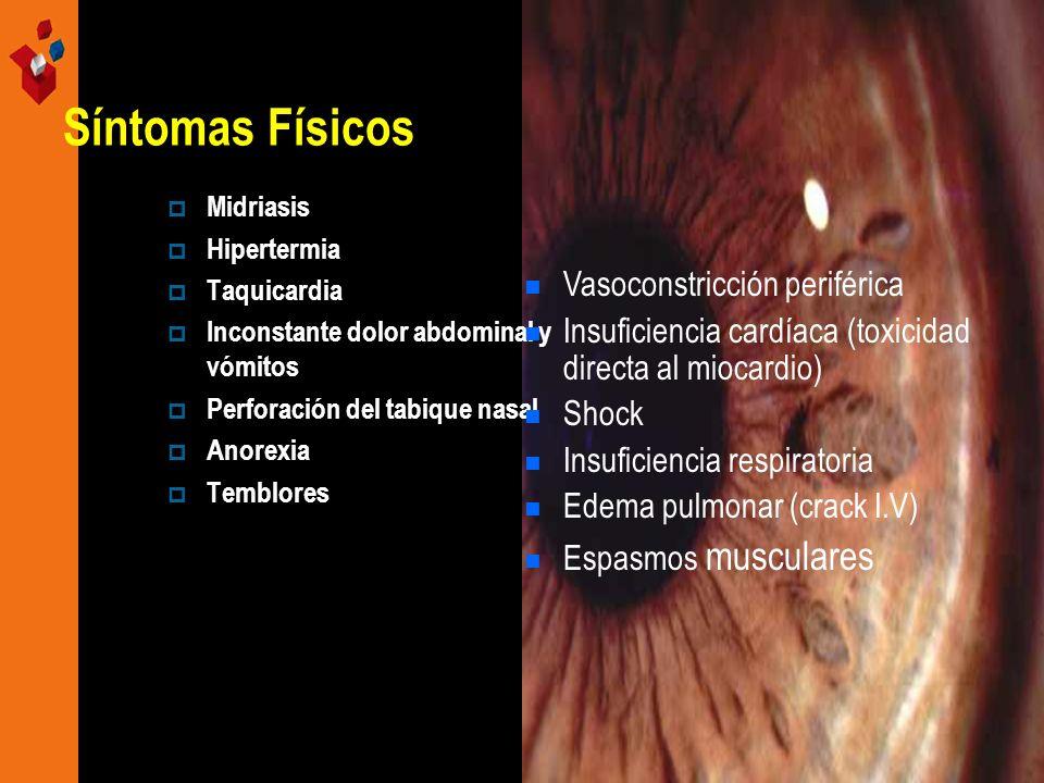 Síntomas Físicos Midriasis Hipertermia Taquicardia Inconstante dolor abdominal y vómitos Perforación del tabique nasal Anorexia Temblores Vasoconstric