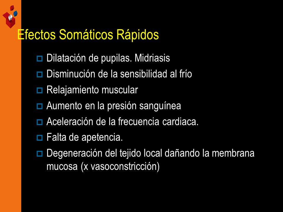 Efectos Somáticos Rápidos Dilatación de pupilas. Midriasis Disminución de la sensibilidad al frío Relajamiento muscular Aumento en la presión sanguíne