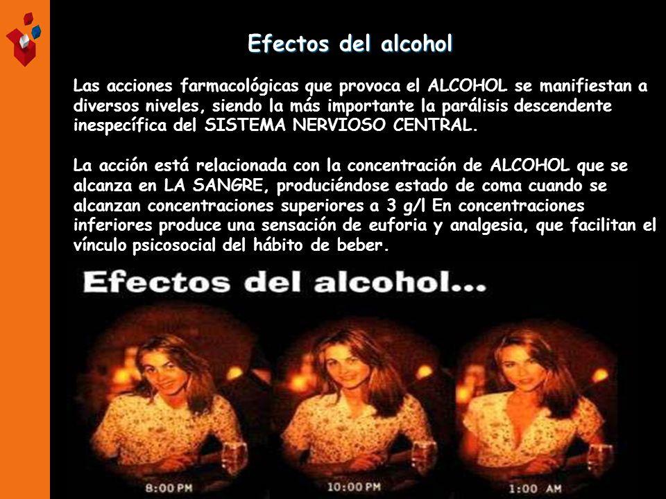 Efectos del alcohol Efectos del alcohol Las acciones farmacológicas que provoca el ALCOHOL se manifiestan a diversos niveles, siendo la más importante