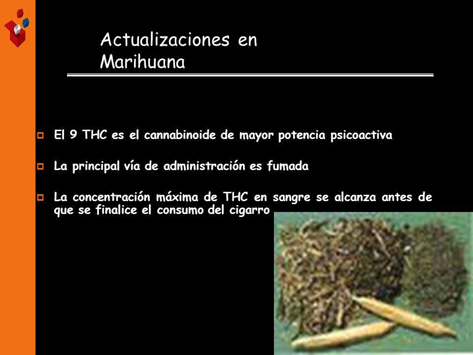 Actualizaciones en Marihuana El 9 THC es el cannabinoide de mayor potencia psicoactiva La principal vía de administración es fumada La concentración m