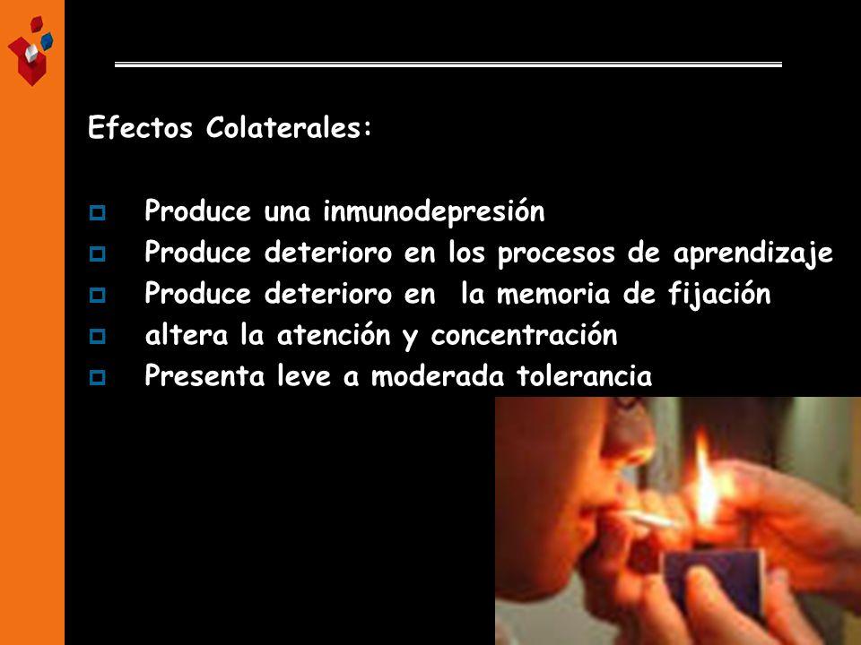 Efectos Colaterales: Produce una inmunodepresión Produce deterioro en los procesos de aprendizaje Produce deterioro en la memoria de fijación altera l