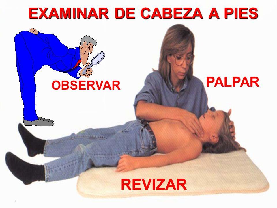 EXAMINAR DE CABEZA A PIES OBSERVAR PALPAR REVIZAR