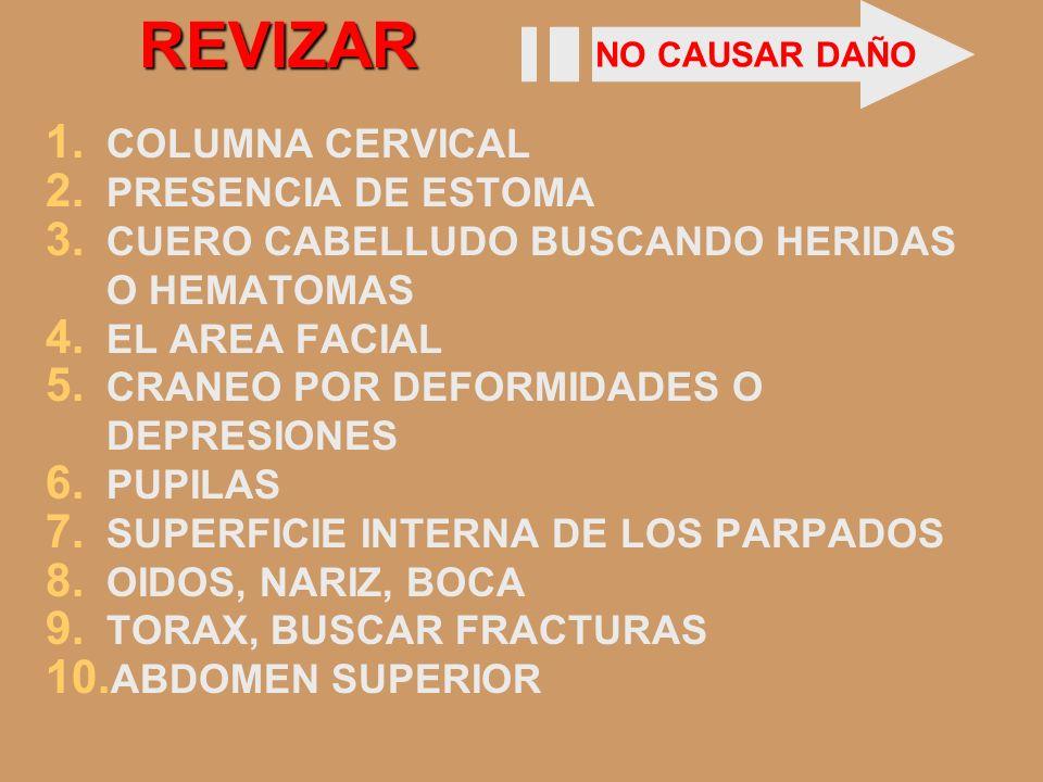REVIZAR 1. COLUMNA CERVICAL 2. PRESENCIA DE ESTOMA 3. CUERO CABELLUDO BUSCANDO HERIDAS O HEMATOMAS 4. EL AREA FACIAL 5. CRANEO POR DEFORMIDADES O DEPR