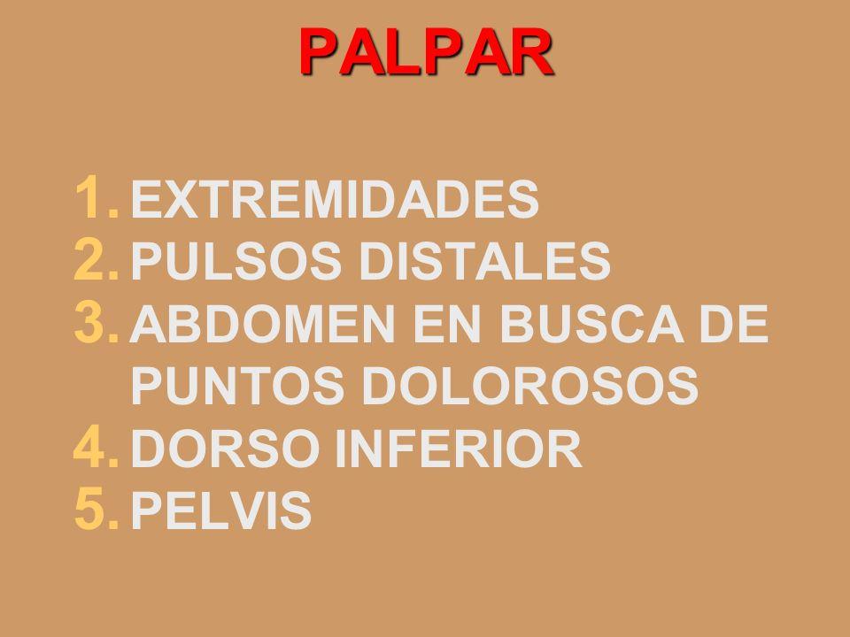 PALPAR 1. EXTREMIDADES 2. PULSOS DISTALES 3. ABDOMEN EN BUSCA DE PUNTOS DOLOROSOS 4. DORSO INFERIOR 5. PELVIS