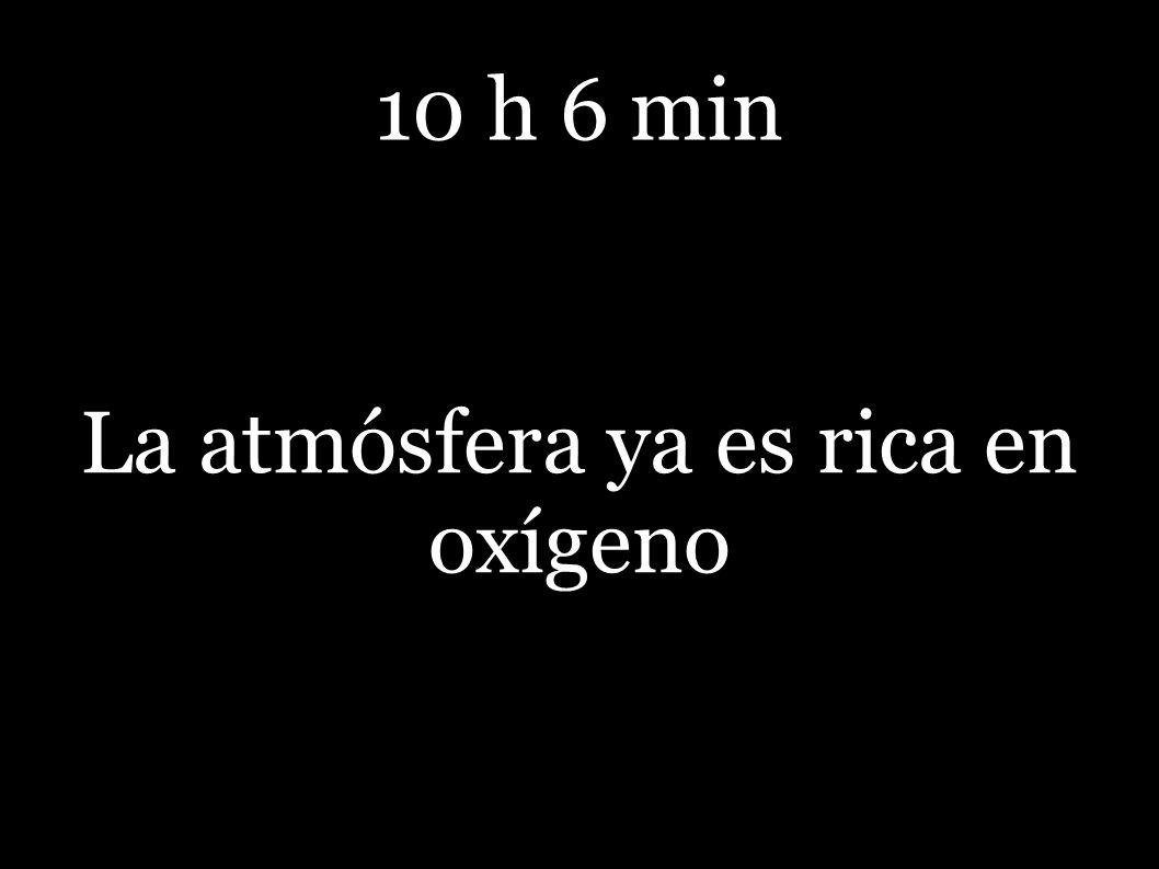 10 h 6 min La atmósfera ya es rica en oxígeno