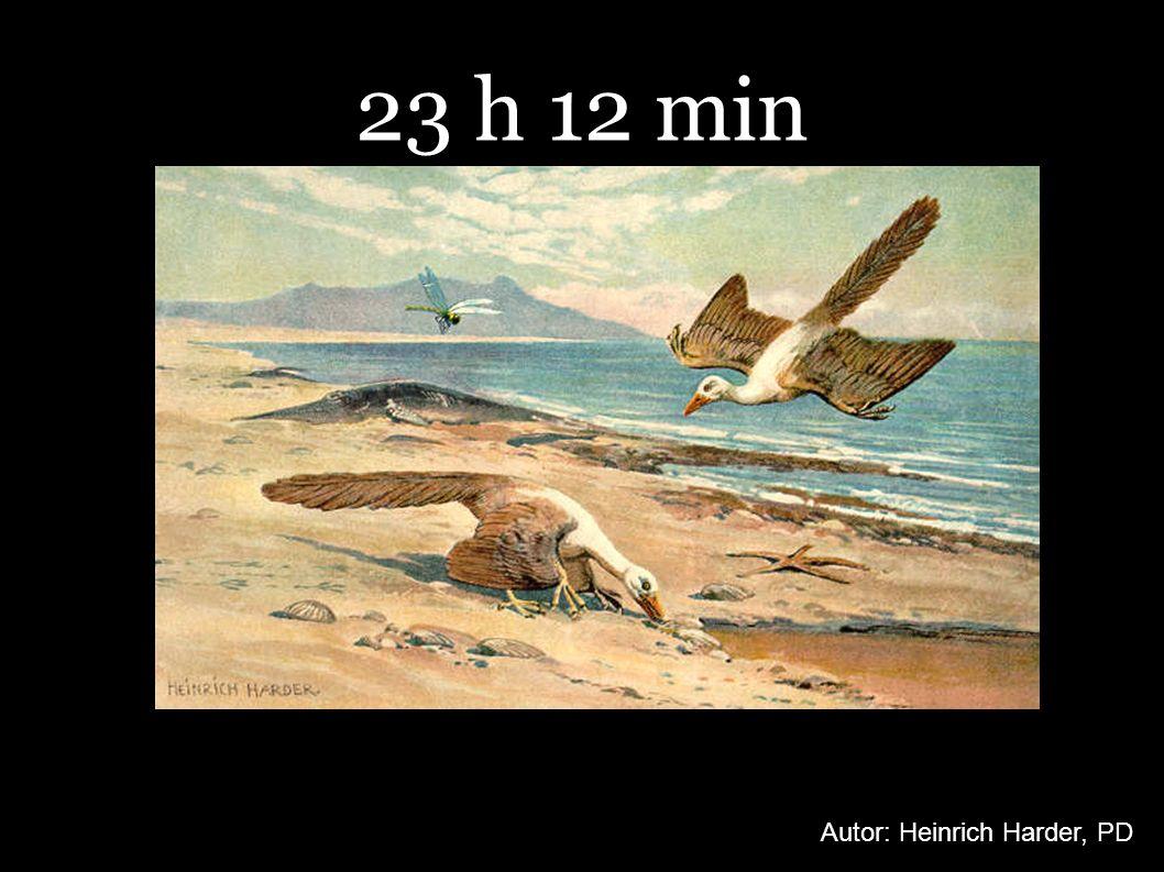 23 h 12 min Autor: Heinrich Harder, PD
