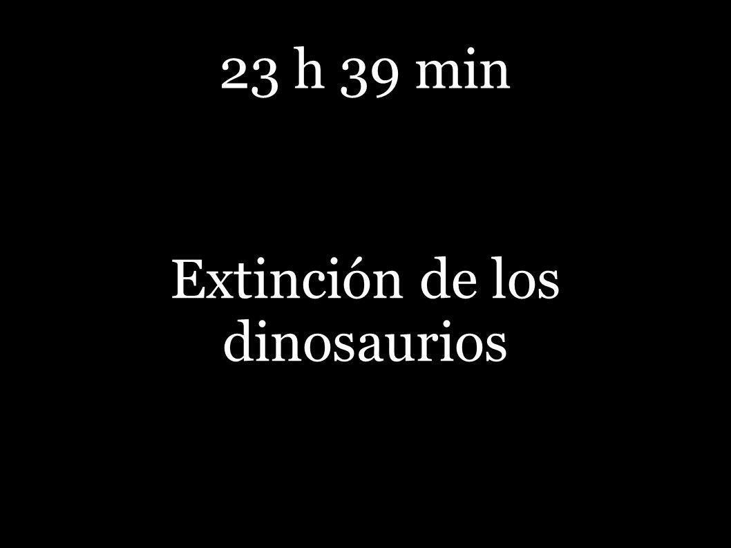23 h 39 min Extinción de los dinosaurios