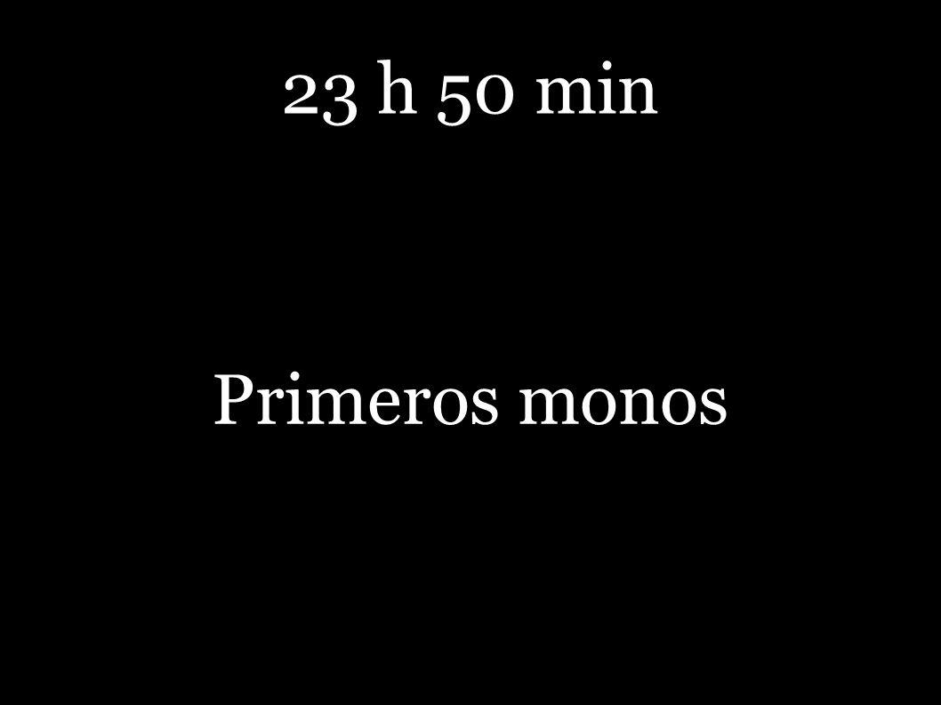 23 h 50 min Primeros monos