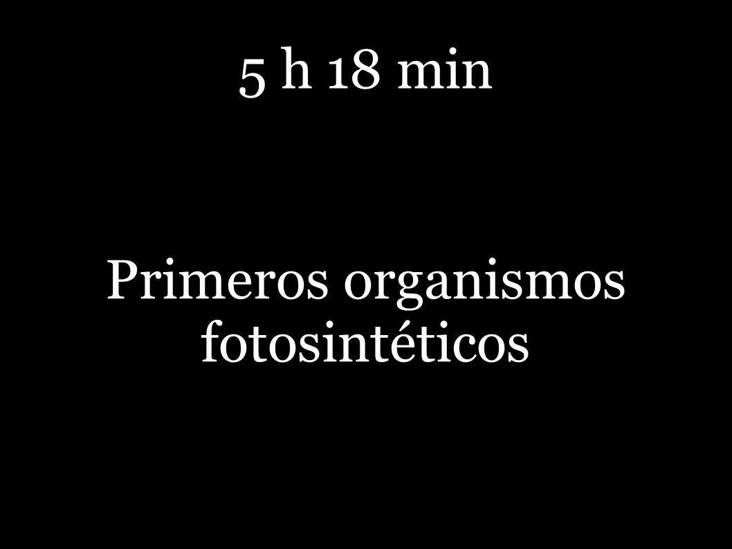 5 h 18 min Primeros organismos fotosintéticos