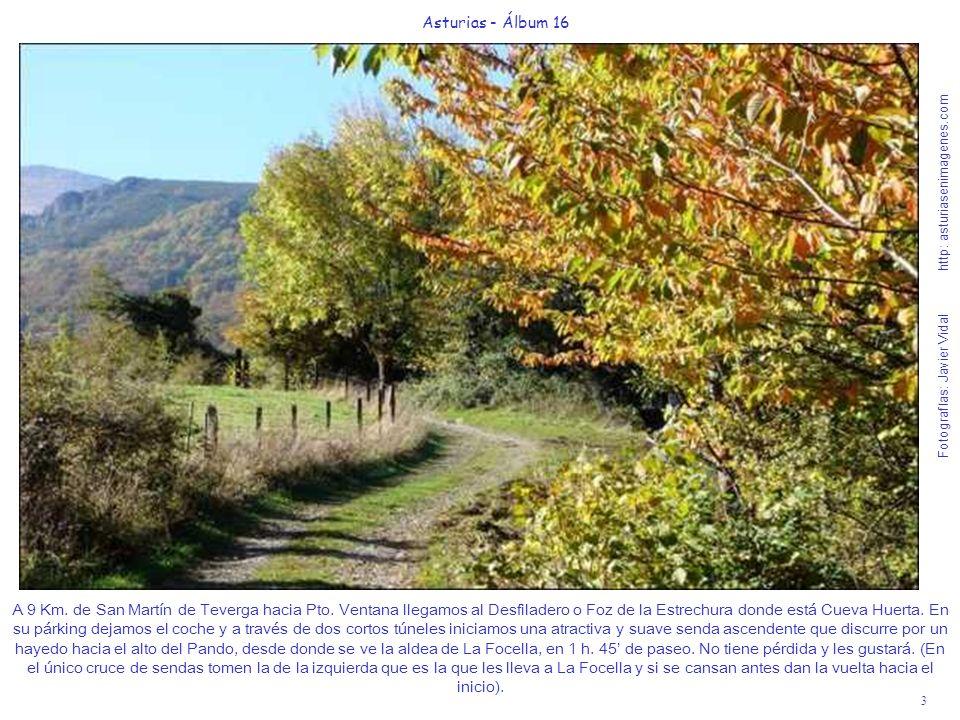 4 Asturias - Álbum 16 Fotografías: Javier Vidal http: asturiasenimagenes.com El Monumento Natural de Cueva Huerta está al inicio de la Foz de la Estrechura.