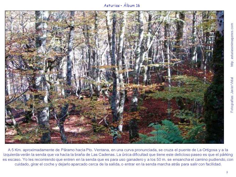 9 Asturias - Álbum 16 Fotografías: Javier Vidal http: asturiasenimagenes.com A 5 Km. aproximadamente de Páramo hacia Pto. Ventana, en una curva pronun
